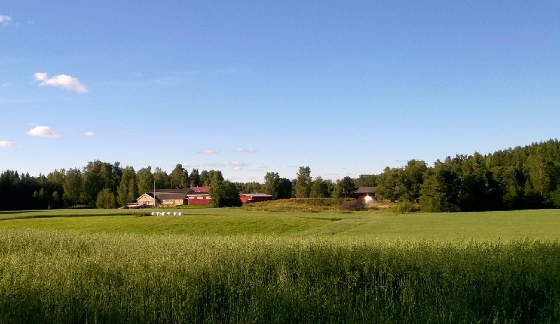 Könnölä Holiday Farm
